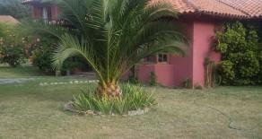 Cod. 376 Casa en parcela 300 m2/ 5000m2 Talagante