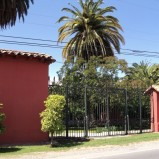 Cod. 230 Hacienda 45 hectáreas Quillota