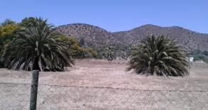 Cod. 910 Parcela 5000 mts. Condominio Las Palmas Talagante